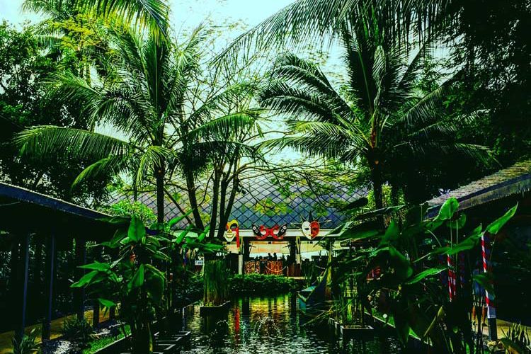 What To Do In Koh Samui – Hire A Driver To See The Island