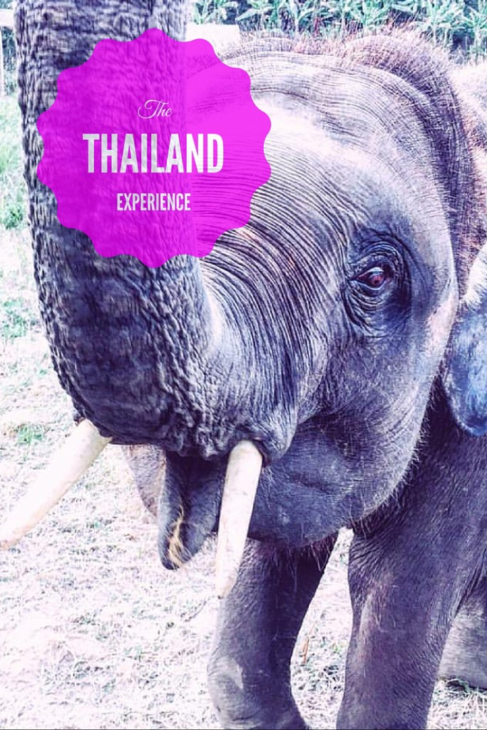 Ultimate Thailand experience