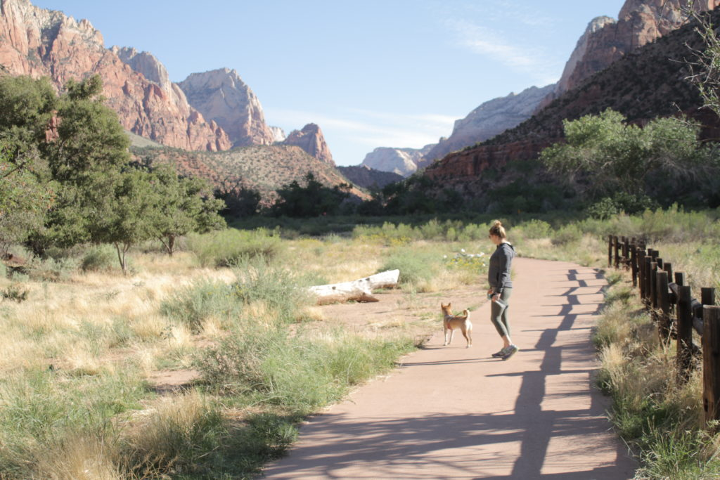 half day in zion