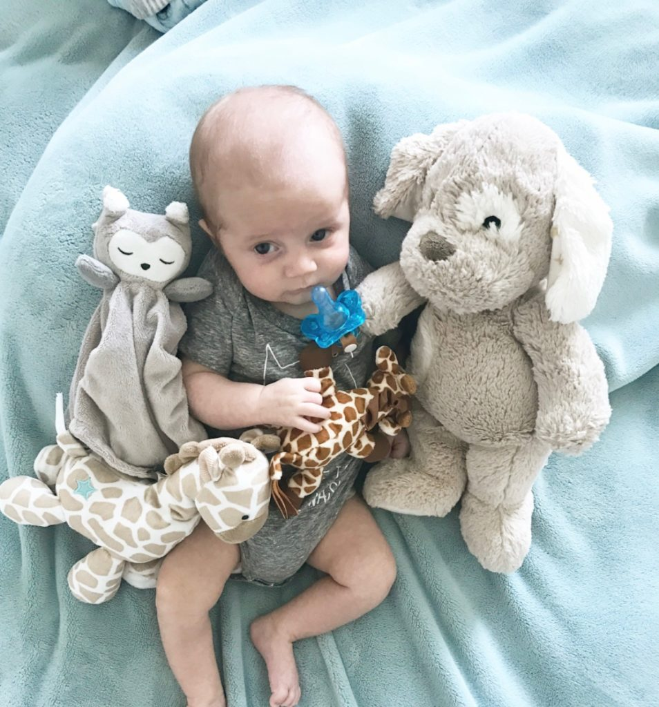 cam and stuffed animals