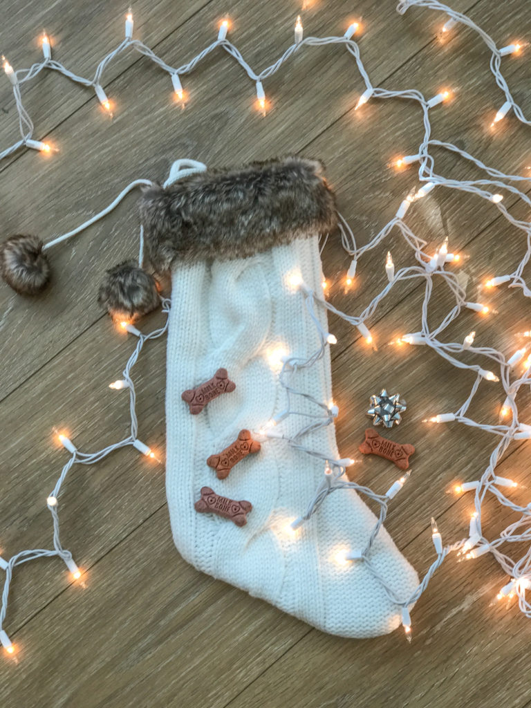 pup presents gift ideas for dogs holidays