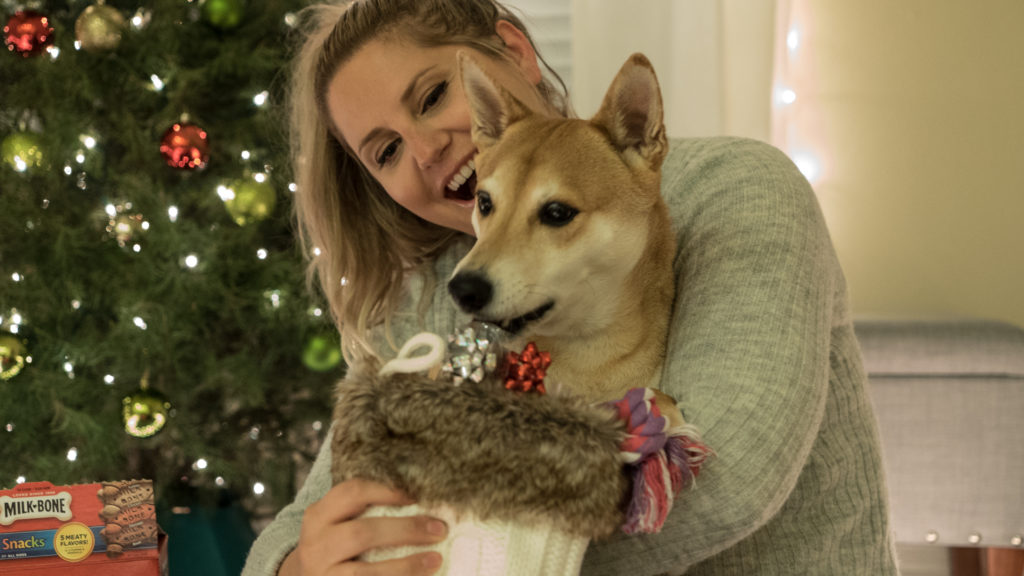 dog gift ideas for pups